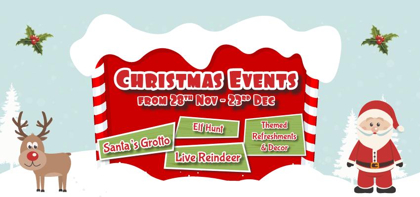 Little Owl Farm Park Christmas Event
