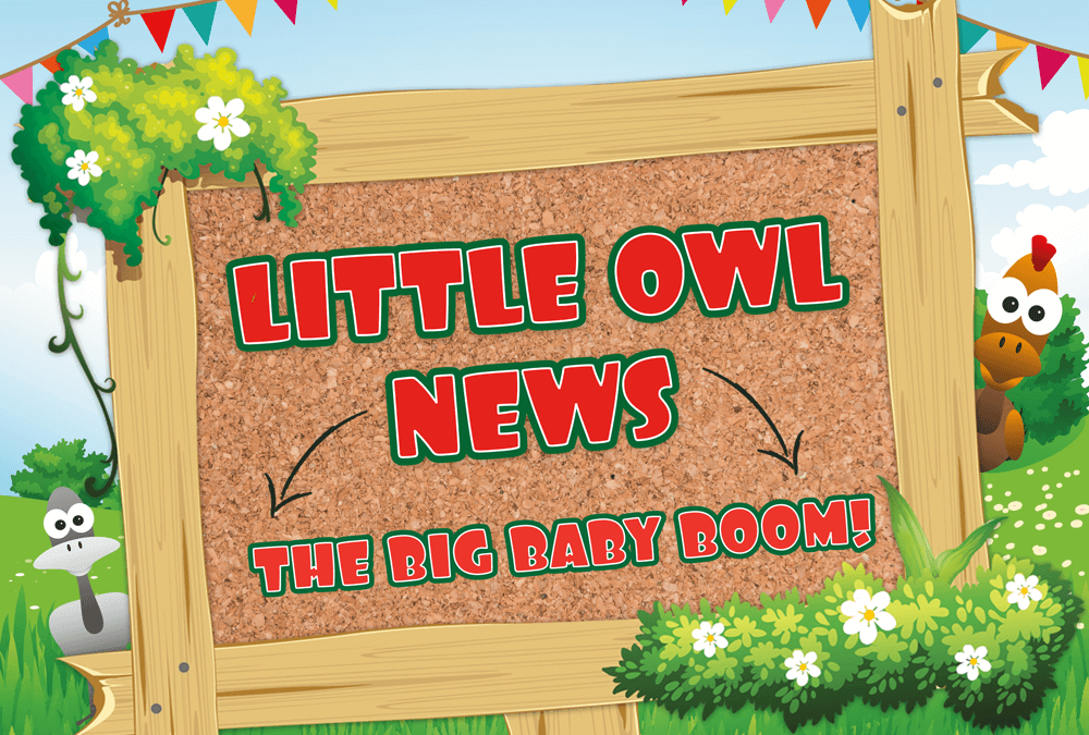 Little Owl News: The BIG Baby Boom!