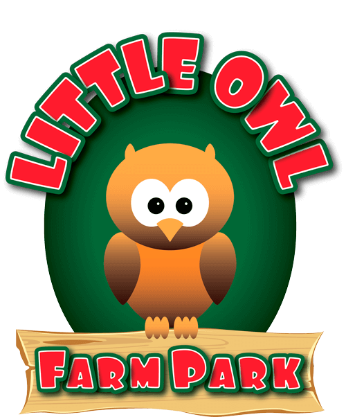 Little Owl Farm Park
